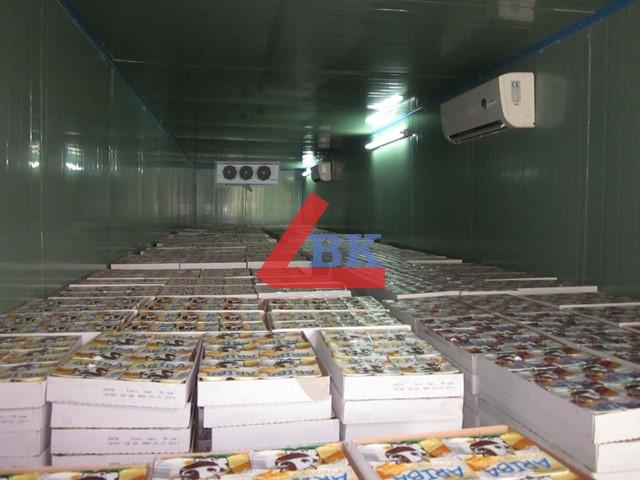 Lắp đặt kho lạnh giá rẽ, Kho lạnh bảo quản, cấp đông công nghiệp toàn quốc