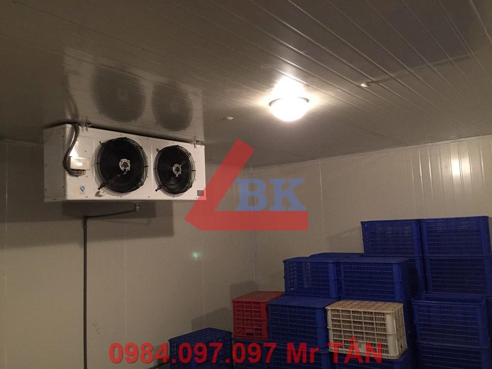 Lắp Đặt kho lạnh trữ bông thanh long